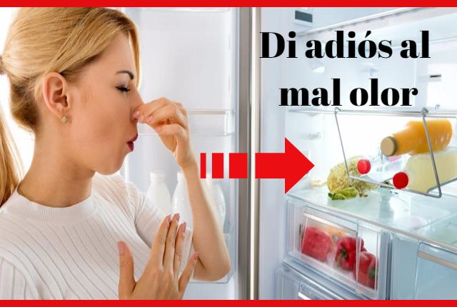 quitar mal olor refrigerador nevera